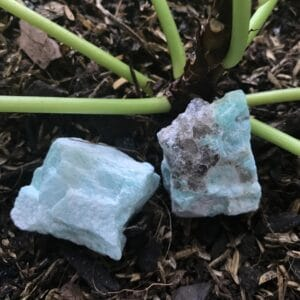 Amazonite Rough next to Pilea Plant